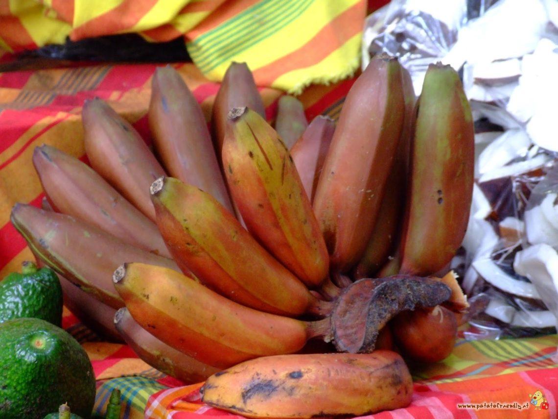 Le Banane tipiche della Martinica