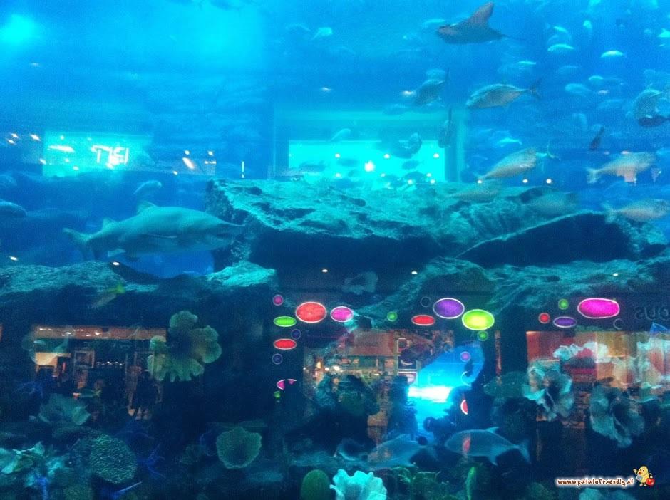 L'acquario con gli squali di Dubai