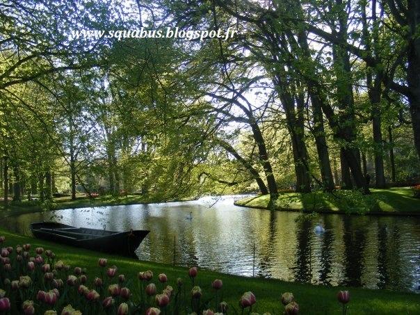 [cml_media_alt id='1403']vacanza in Olanda coi bambini[/cml_media_alt]