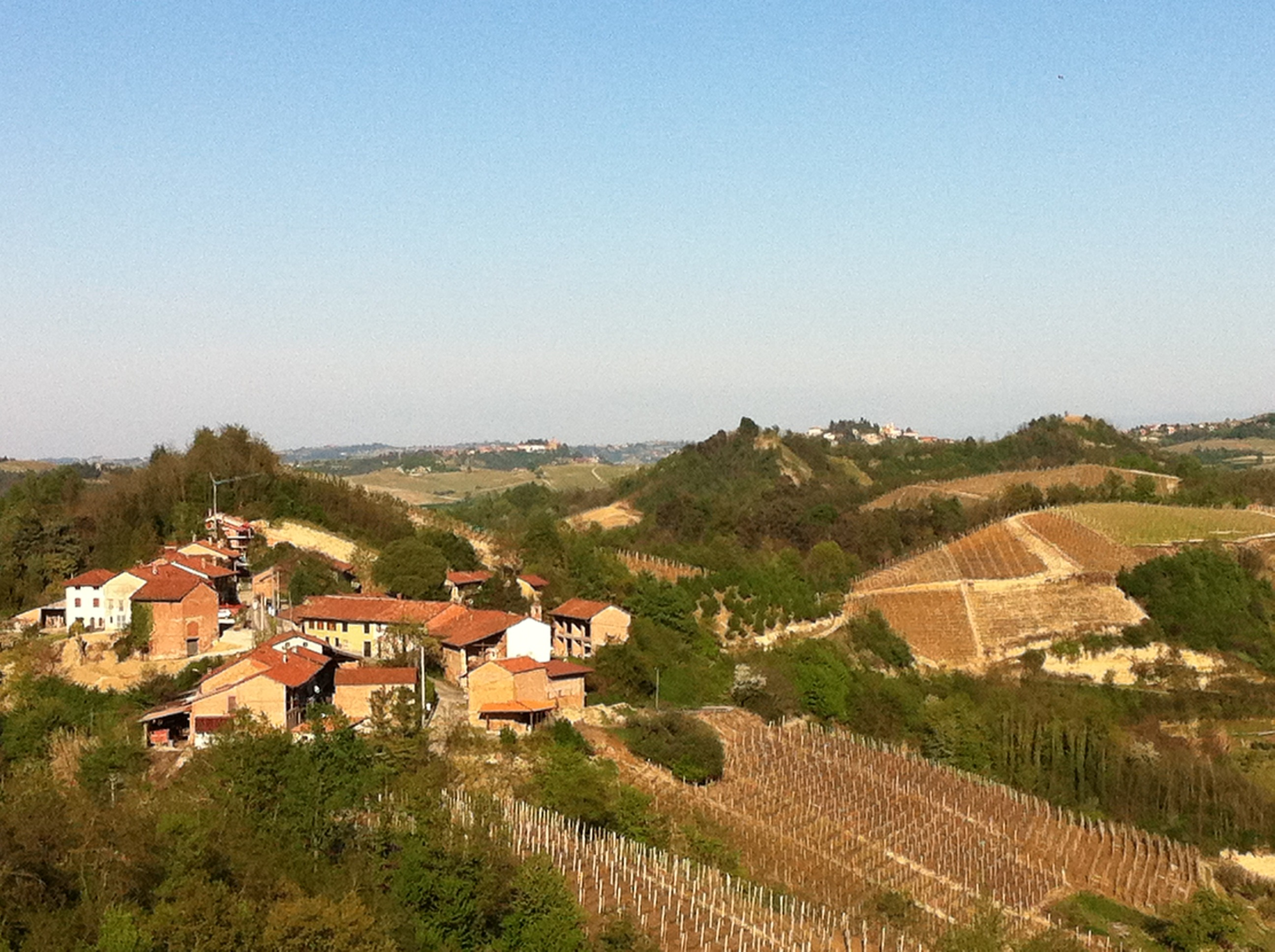 Le Langhe ed il Roero: panorama