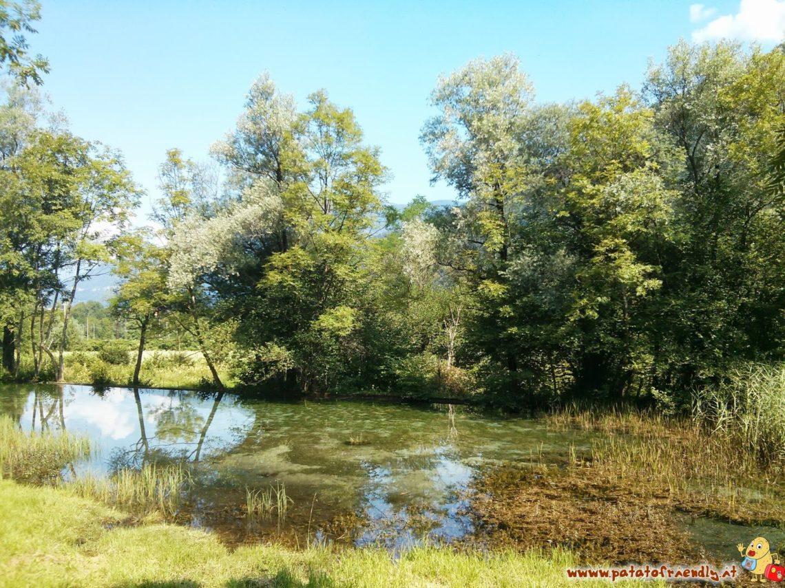 [cml_media_alt id='4602']Valsassina - La Natura[/cml_media_alt]
