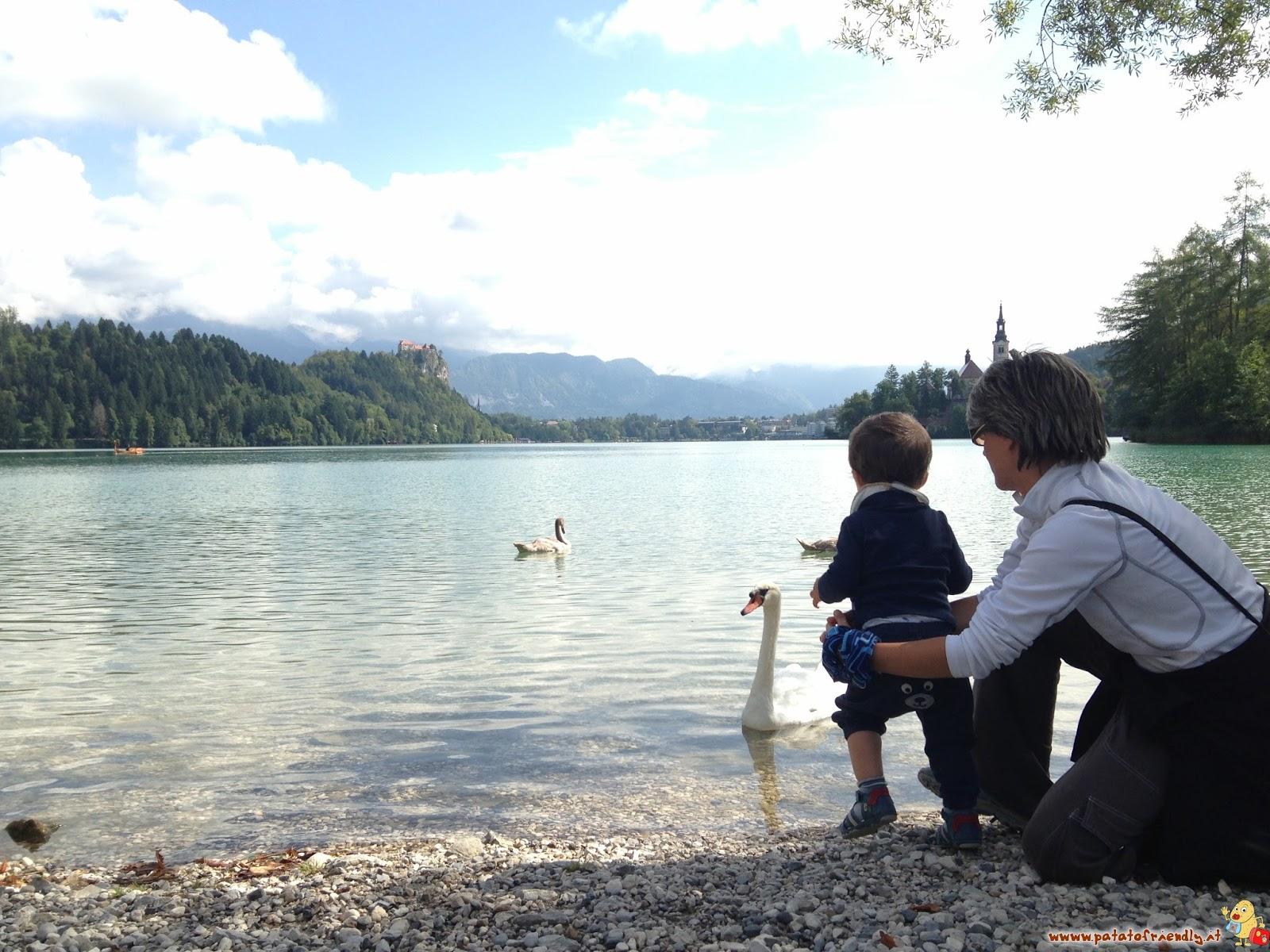 Viaggiare con i bambini: Bled - Slovenia