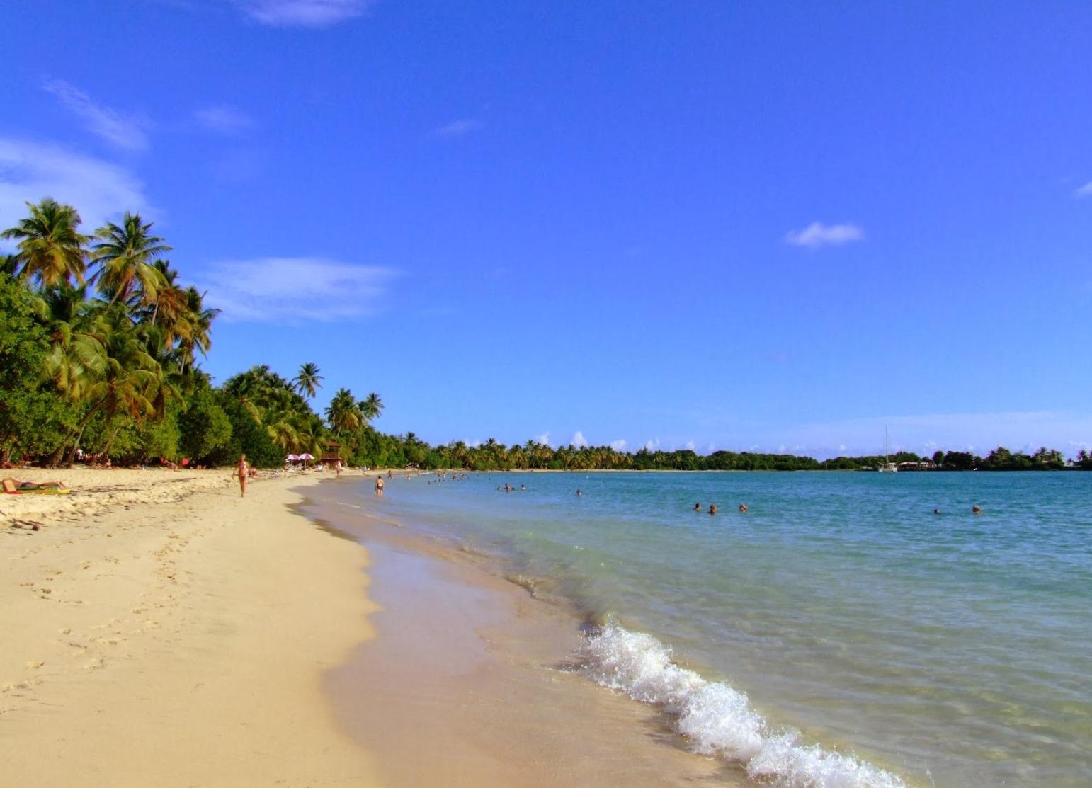 2d822804f7ad05 Caraibi  Martinica e le sue spiagge - una destinazione per andare al mare  in inverno