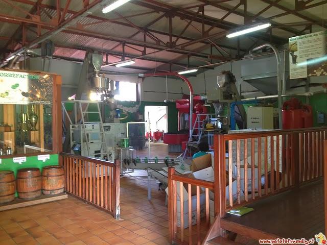 Cosa fare in Guadalupe: Il museo del Caffè in Guadalupa