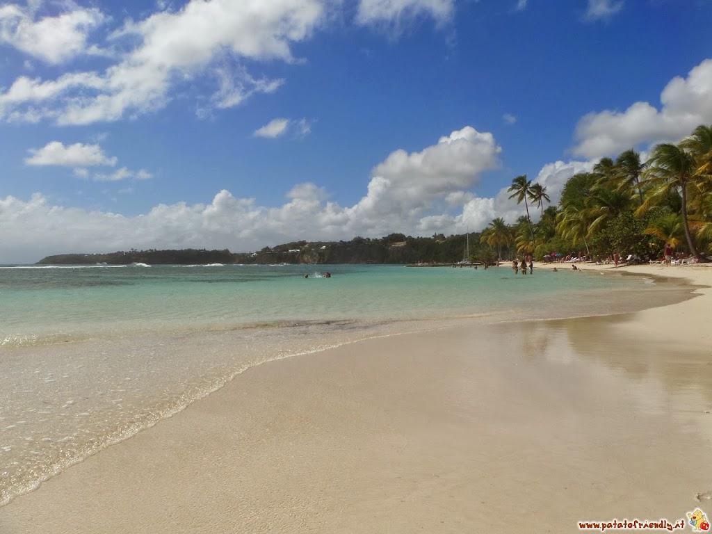 [cml_media_alt id='4055']La spiaggia di Le Caravelle in Guadalupa[/cml_media_alt]