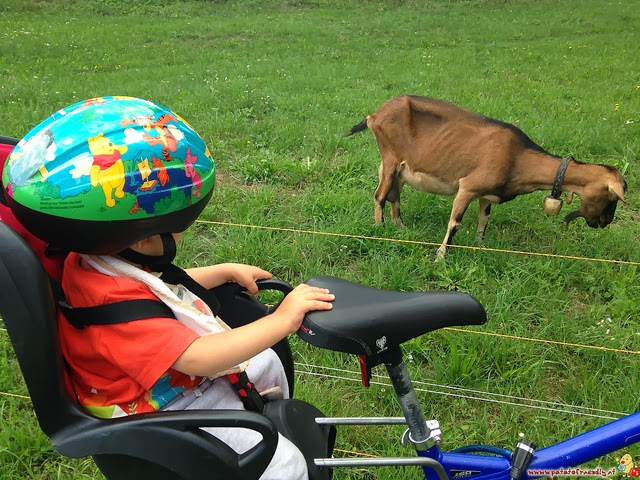 Gita in bicicletta nei dintorni del lago