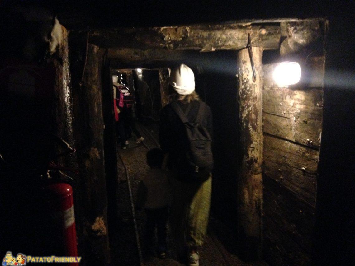 [cml_media_alt id='3231']L'interno buio della miniera del Temperino[/cml_media_alt]