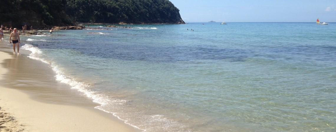 La meravigliosa spiaggia di Cala Violina a Scarlino