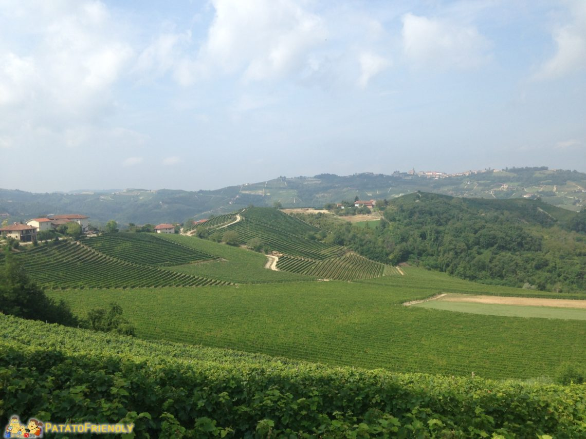 [cml_media_alt id='3836']Le Langhe[/cml_media_alt]
