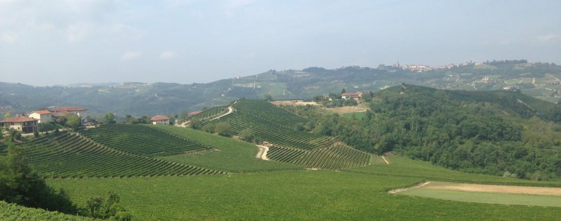 Le Langhe e il Roero: le colline e i vigneti