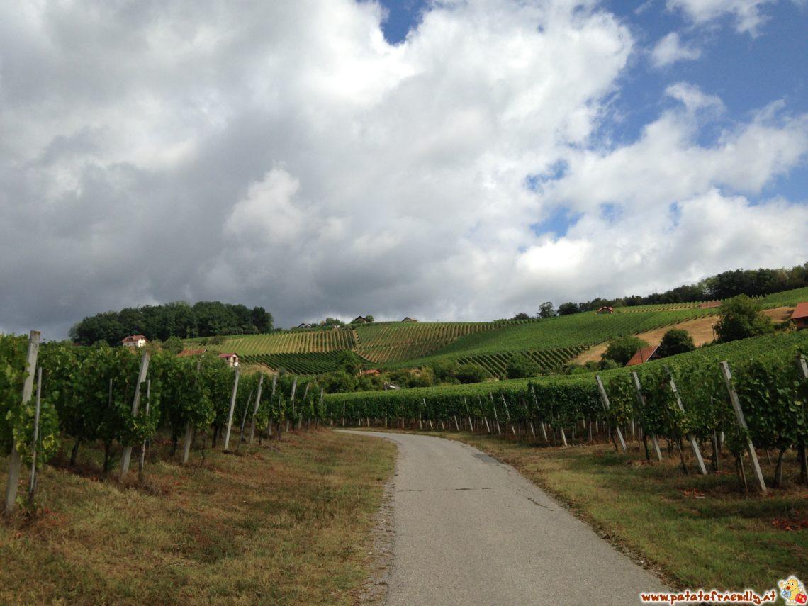 I rilassanti vitigni della Bela Krajina