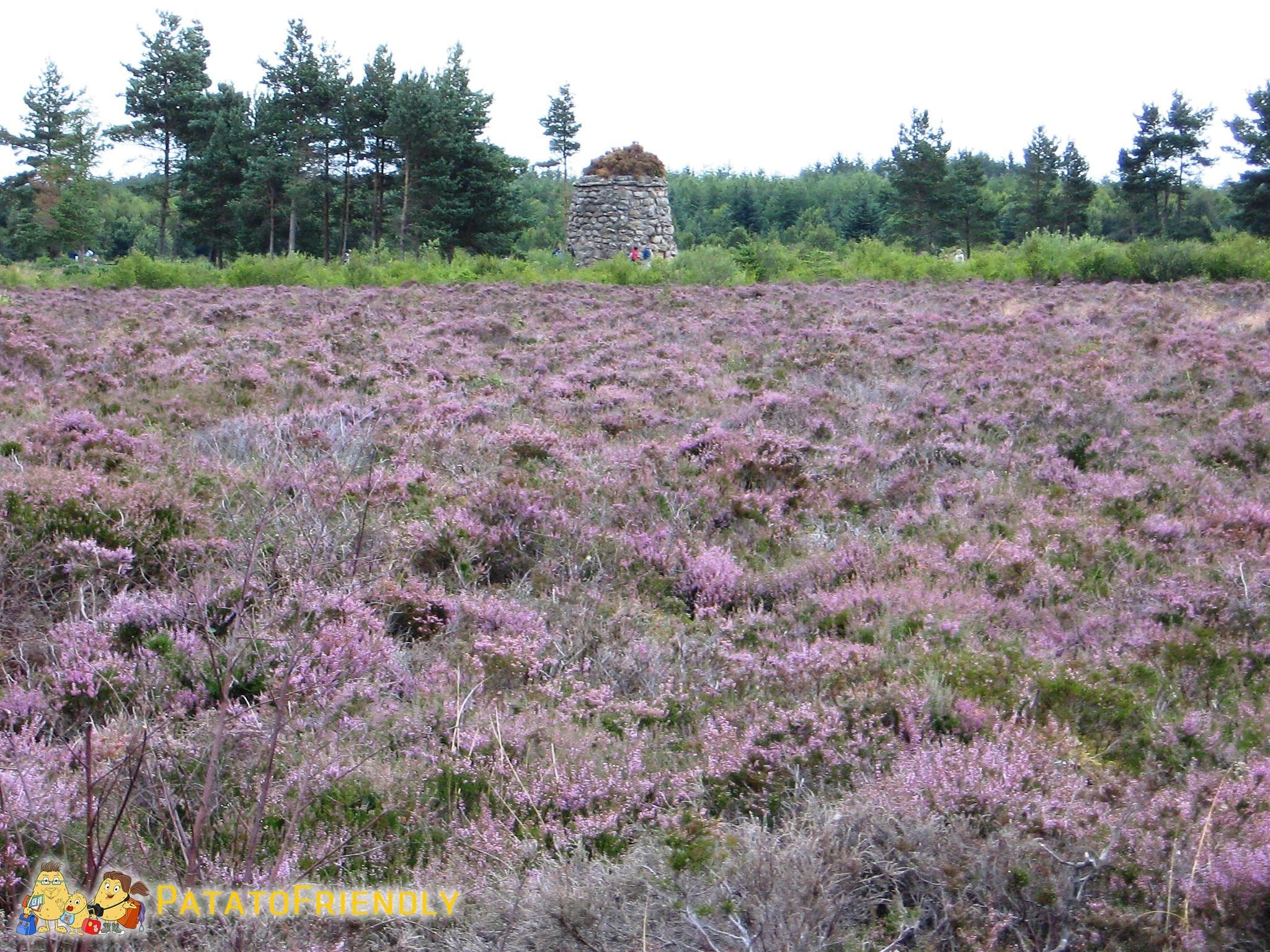 Culloden in Scozia cosa vedere
