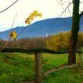 Montegrappa Outdoor Park - Panorama