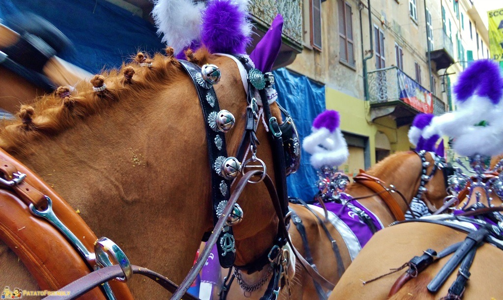 [cml_media_alt id='5293']Il Carnevale di Ivrea - Particolare dei cavalli[/cml_media_alt]