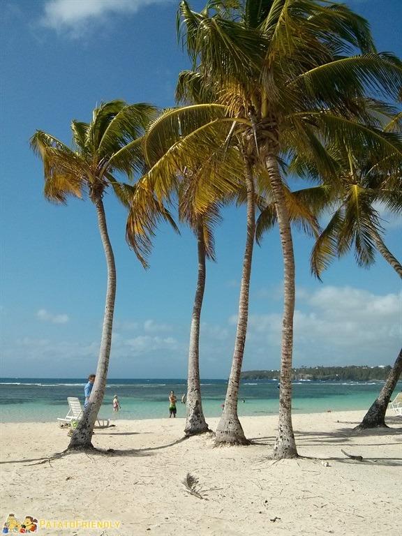 [cml_media_alt id='5067']La spiaggia di Le Caravelle a Sainte Anne - Guadeloupe[/cml_media_alt]