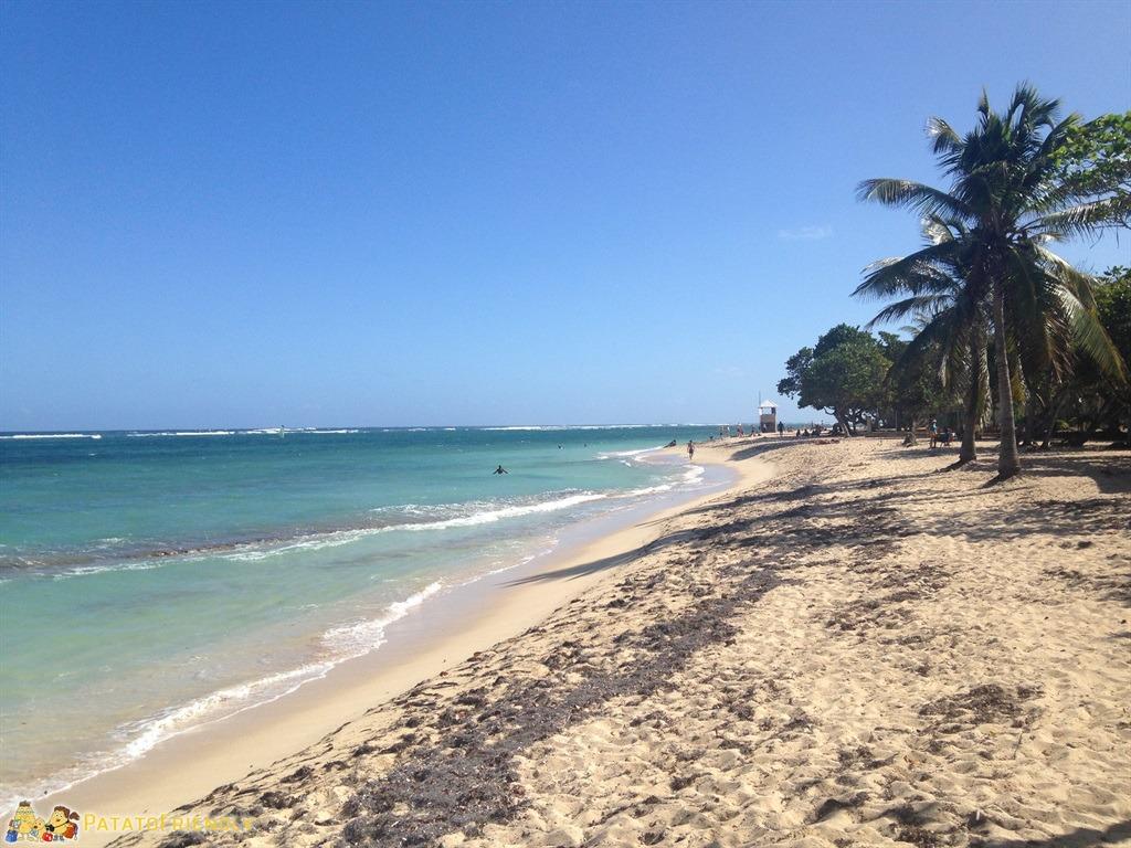 [cml_media_alt id='5068']Le meravigliose spiagge bianche della Guadelupe[/cml_media_alt]