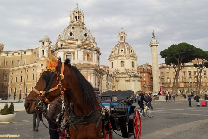 Visitare Roma in un giorno - La colonna Traiana