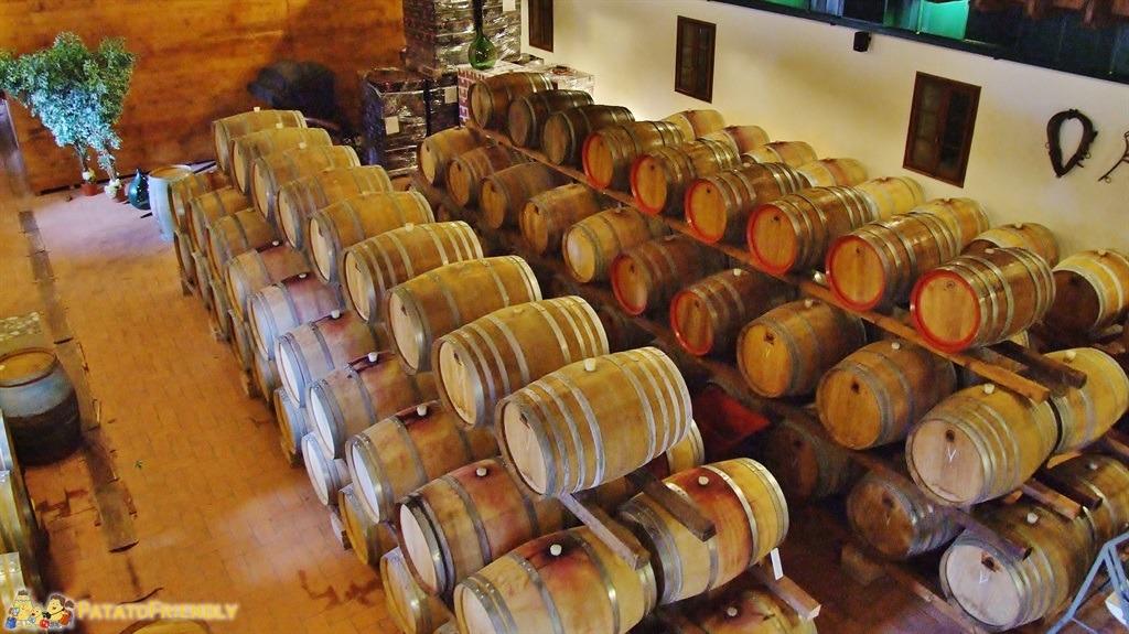 La strada dei Vini in Veneto - Una bellissima cantina con le botti in rovere