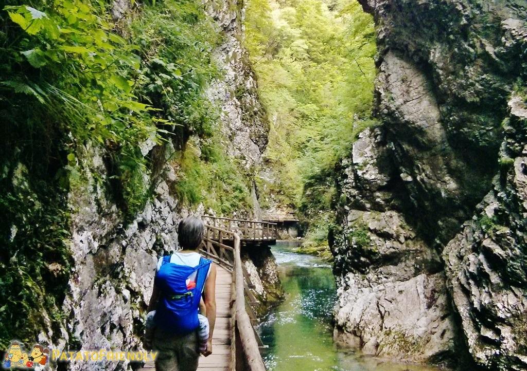 [cml_media_alt id='5341']Lago di Bled - La Gola di Vintgar[/cml_media_alt]