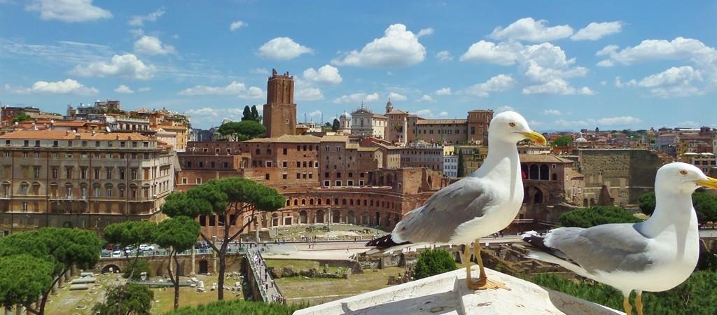 Roma per i bambini
