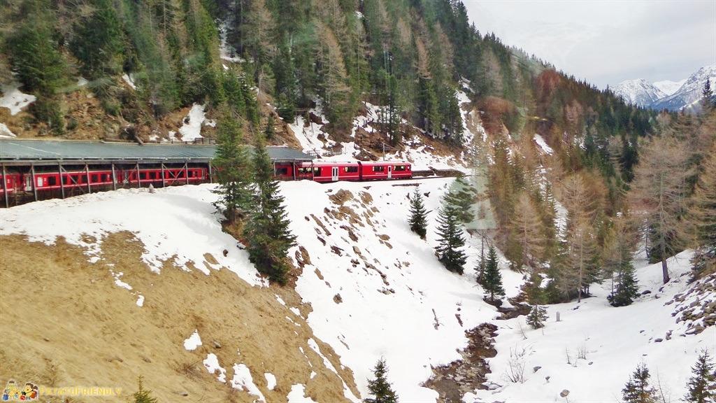 [cml_media_alt id='5584']Il trenino rosso del Bernina - Il treno si inerpica fra i ghiacciai[/cml_media_alt]
