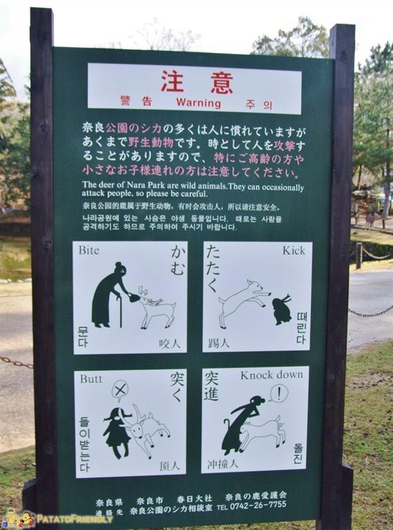 [cml_media_alt id='5179']Un eloquente cartello in stile manga che mette in guardia i turisti dai cervi[/cml_media_alt]