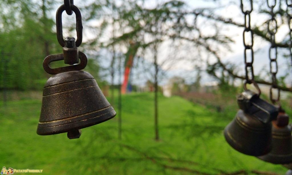 [cml_media_alt id='5805']il Giardino Labirinto di Cermes - Primo piano sulle campanelle[/cml_media_alt]