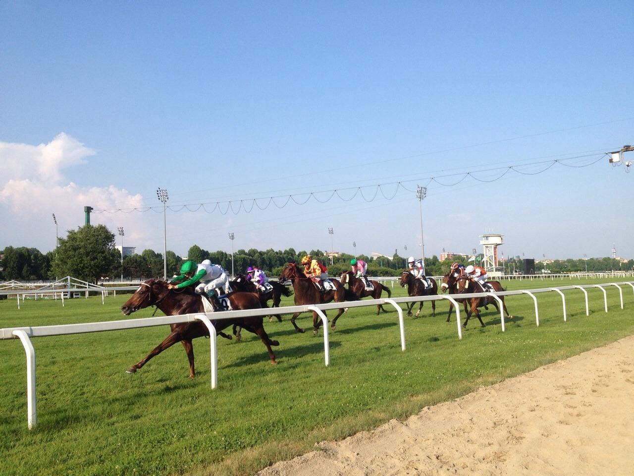 Da fare a Milano coi bambini: le corse dei cavalli all'ippodromo