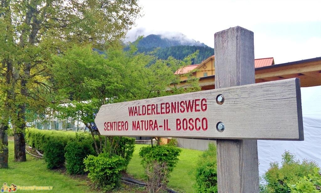 [cml_media_alt id='5875']Alta Val Pusteria - Il Sentiero Natura nei pressi di Dobbiaco[/cml_media_alt]