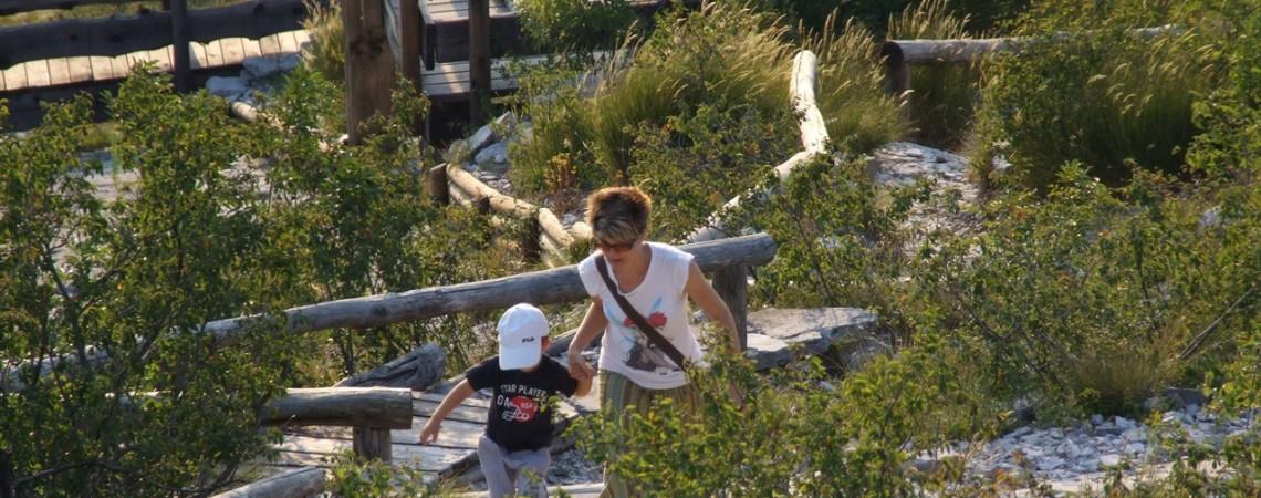 A caccia di orme dei dinosauri - Patato e mamma impegnati nella scalata