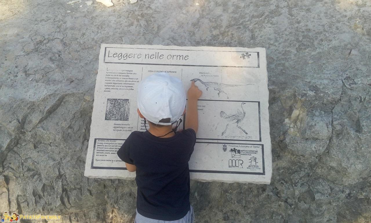 A caccia di orme dei dinosauri - Il Patato studia i cartelli