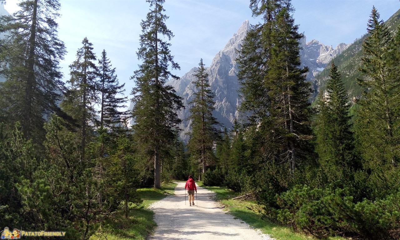 [cml_media_alt id='5988']Escursioni in Val Pusteria[/cml_media_alt]