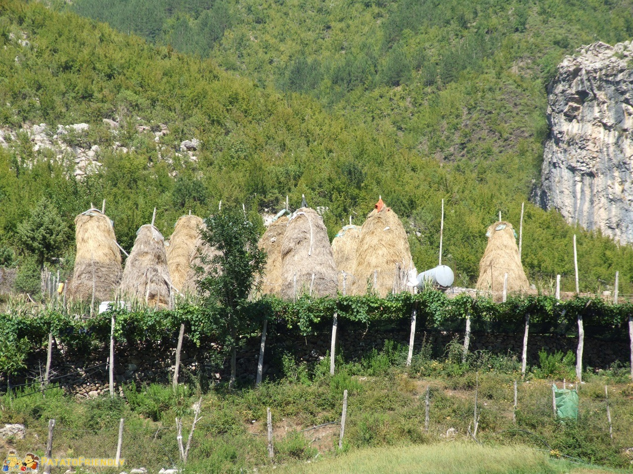 Lago Koman - I caratteristici fienili Albanesi