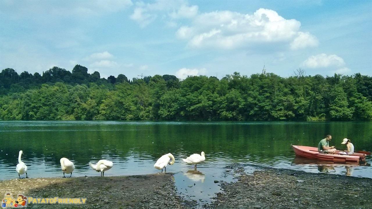 [cml_media_alt id='6055']Parco Adda - Il fiume Adda[/cml_media_alt]