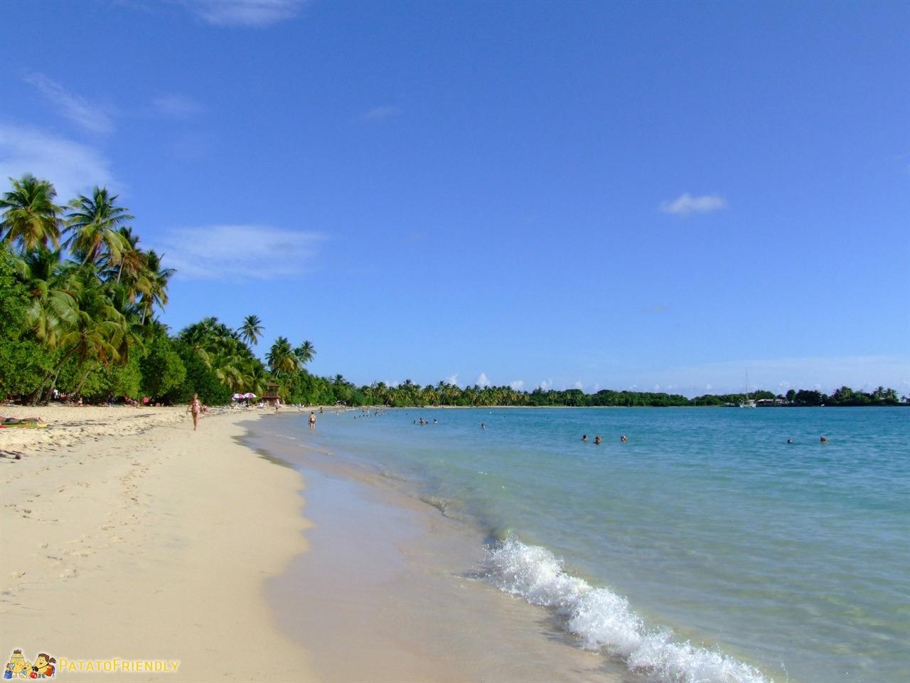 Le spiagge della Martinica - Anse Trabaud