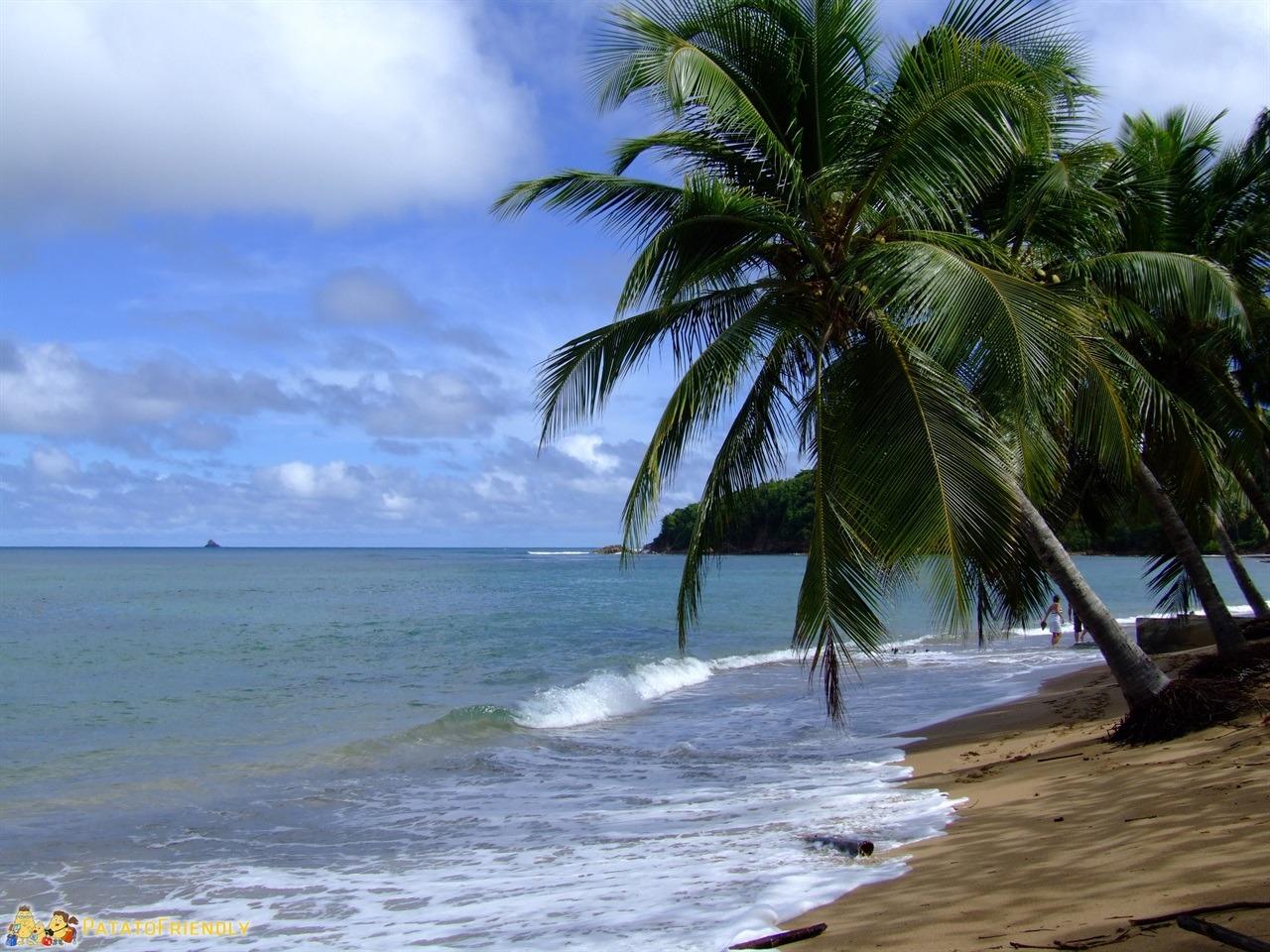 Le spiagge della Martinica - Anse l'Etang