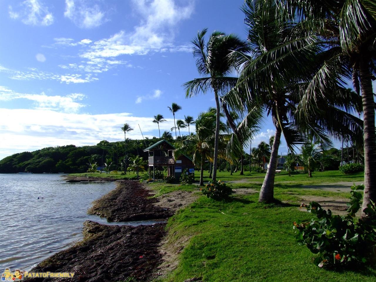 Le spiagge della Martinica - Baie du Vauclin