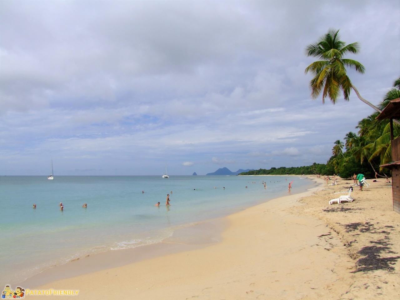 [cml_media_alt id='6676']Le spiagge della Martinica - Le Salines[/cml_media_alt]