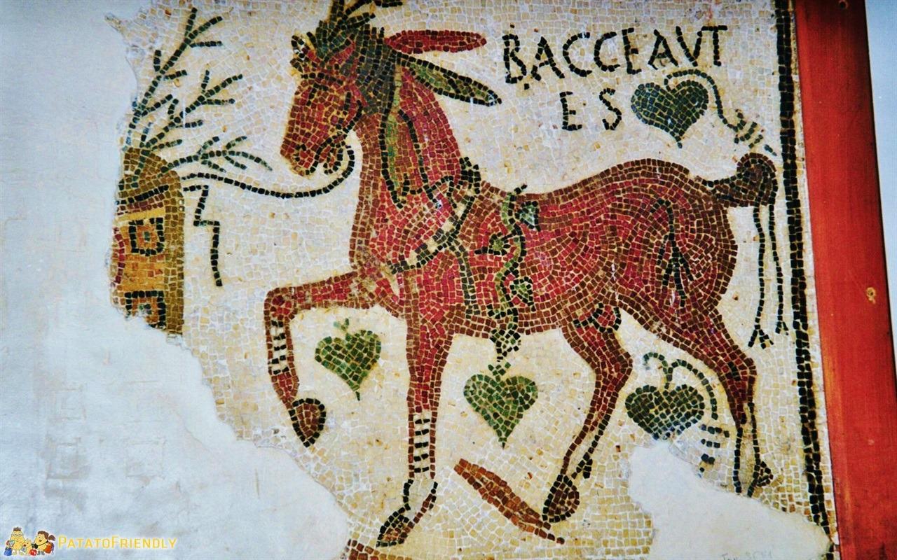 Tunisi - I mosaici romani