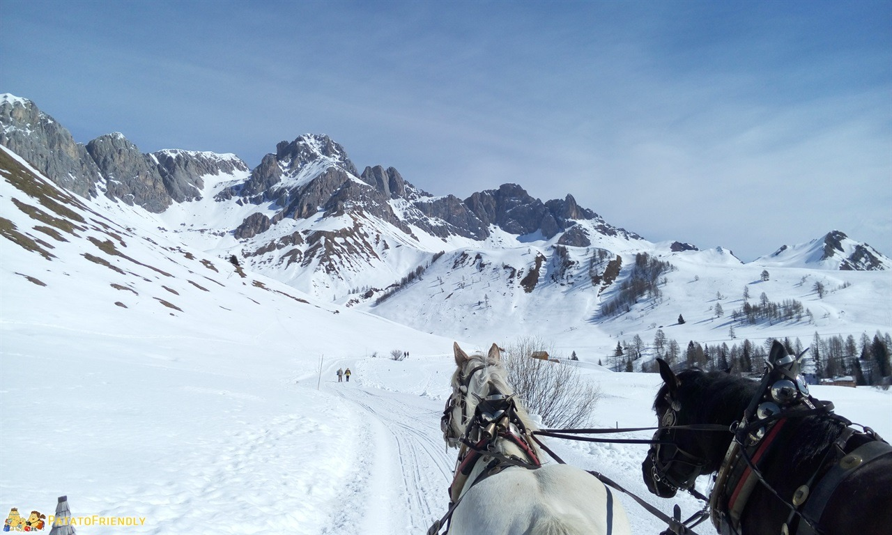 Cosa fare in Val di Fassa - Ammirare il panorama del Fuciade a bordo di una slitta trainata dai cavalli