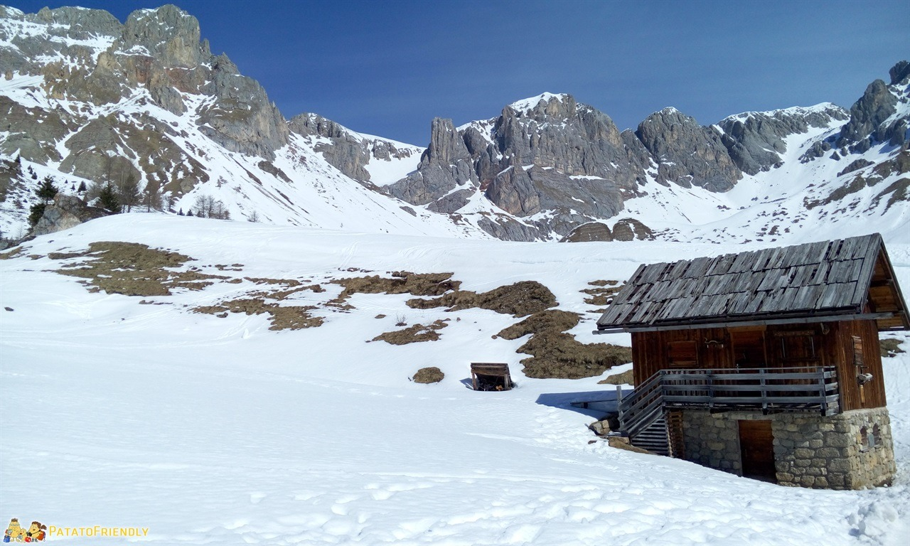 Escursione sulla slitta trainata dai cavalli in Val di Fassa - Panorama sul Fuciade