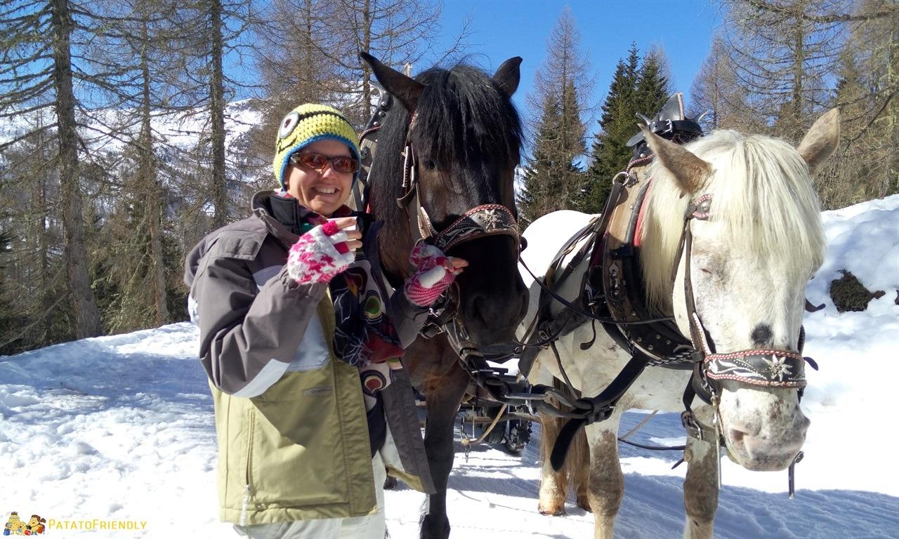 [cml_media_alt id='7295']Escursione sulla slitta trainata dai cavalli in Val di Fassa - Piccola sosta per far riposare i cavalli[/cml_media_alt]