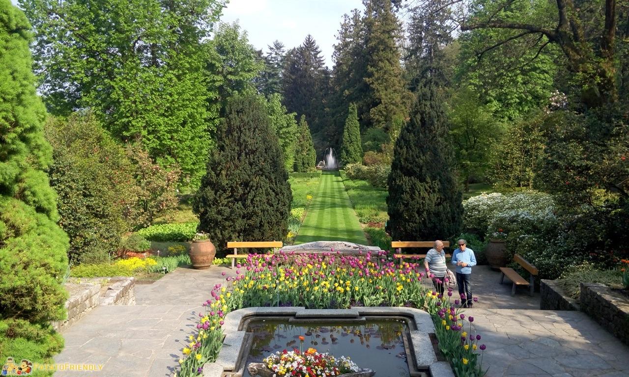 Giardino disegno laghetto for Progettare giardini 3d