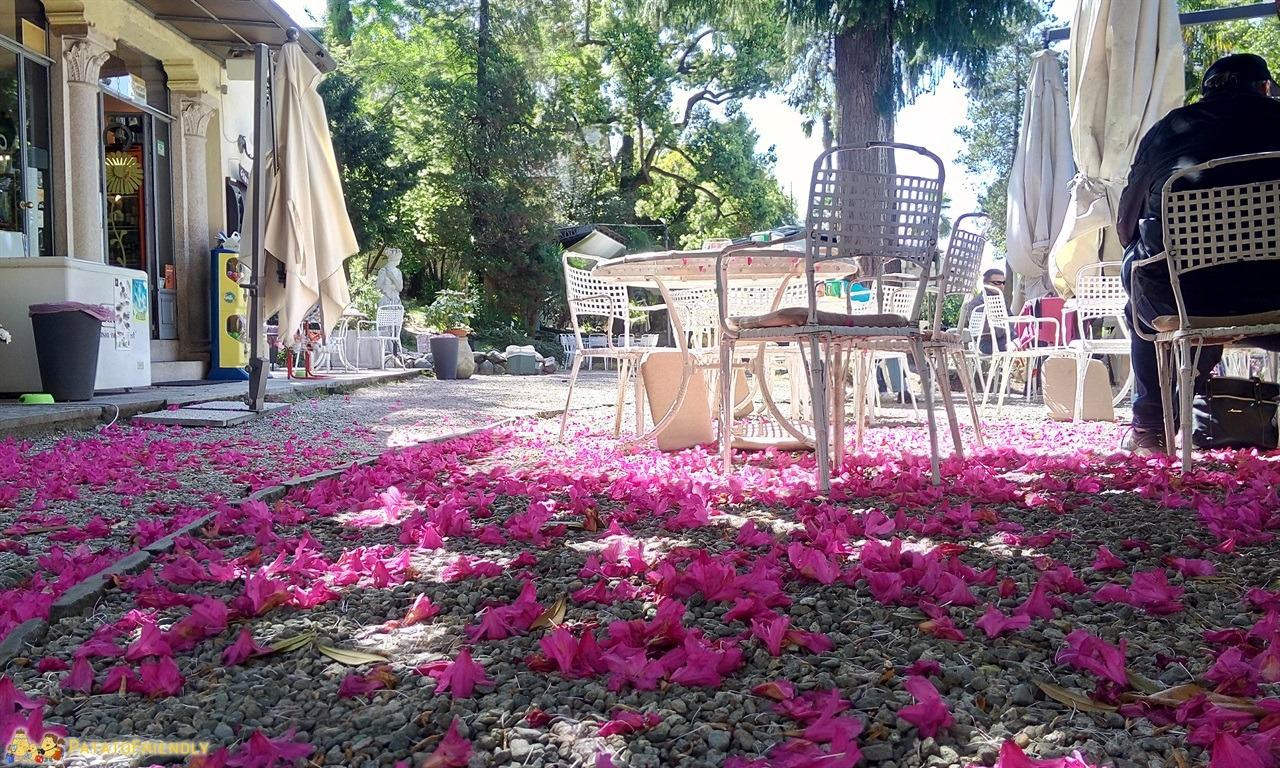 [cml_media_alt id='7500']Lago Maggiore - Villa Giulia a Verbania[/cml_media_alt]
