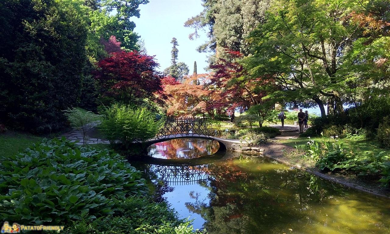 [cml_media_alt id='7608']A Bellagio con i Bambini - Il Giardino Giapponese a Villa Melzi[/cml_media_alt]