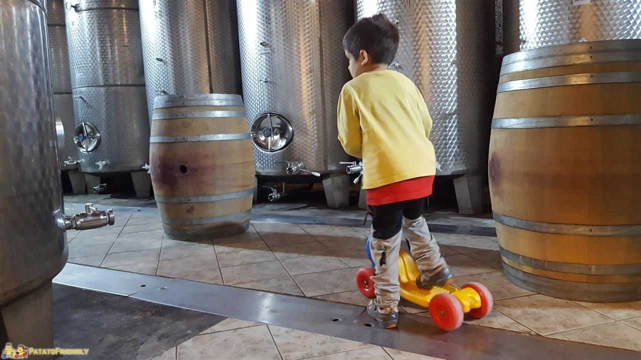 [cml_media_alt id='7727']Cosa fare in Bela Krajina - Il Patato in monopattino nella fabbrica di birra Vizir[/cml_media_alt]