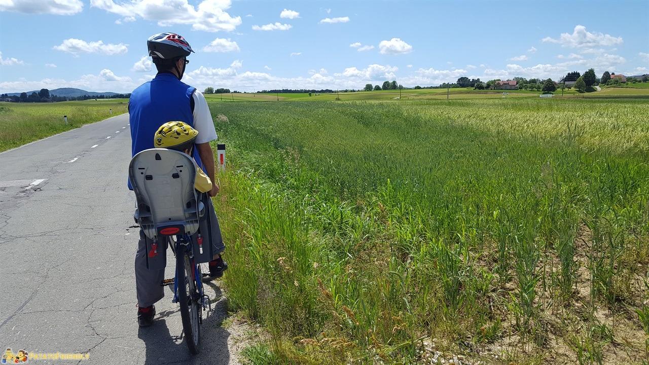 [cml_media_alt id='7690']Vacanza in Slovenia coi bambini - In bicicletta lungo il fiume Kolpa[/cml_media_alt]