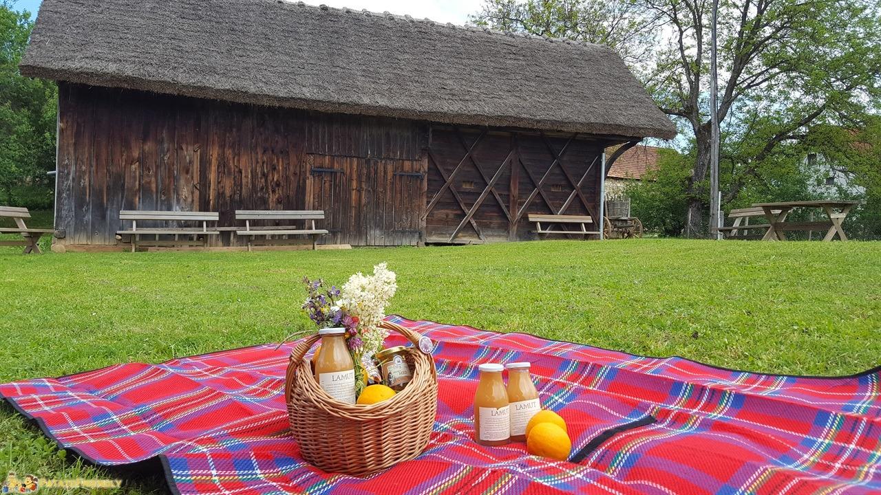 [cml_media_alt id='7697']Vacanza in Slovenia coi bambini - Picnic a Zunici[/cml_media_alt]
