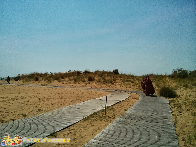 [cml_media_alt id='8127']Cicloturismo a Bibione - La pista ciclabile sulla spiaggia[/cml_media_alt]