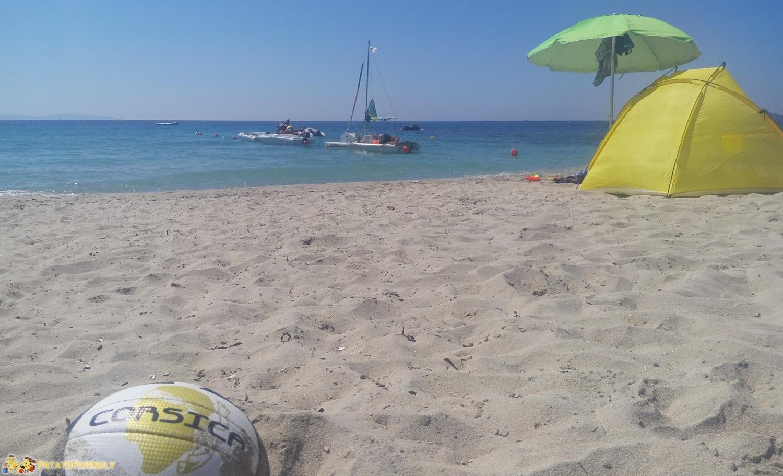 [cml_media_alt id='8202']Le spiagge della Corsica[/cml_media_alt]